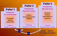 Pour traiter les différentes douleurs, l'OMS a défini les 3 paliers de la douleur, selon son intensité - Plus d'informations