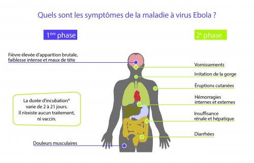 Les symptômes de la maladie à virus Ebola